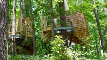 Construction underway on tree houses at Museum of Life and Science's Hideaway Woods