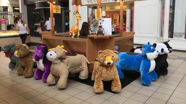 Zoo Rides Kids Salon Open At Northgate Mall Wral Com