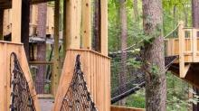 Hideaway Woods at the Museum of Life and Science will feature eight treehouses