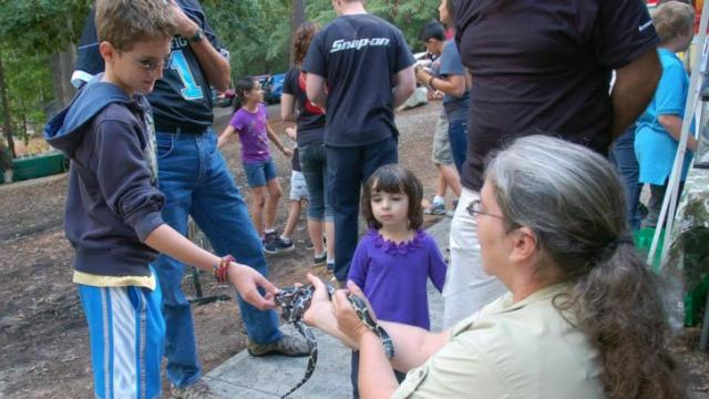 An exhibitor holds a nonvenomous eastern kingsnake for attendees to touch during the annual Wildlife Expo held by the N.C. Wildlife Commission. Courtesy: N.C. Wildlife Commission