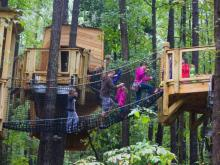 The massive new outdoor exhibit features tree houses, a stream, a spot for young children and a giant sweetgum thicket.