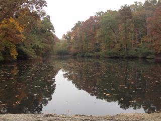 Cooper's Pond at Eastgate Park