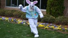 IMAGES: Here's when the Easter Bunny will start popping up at Raleigh area malls