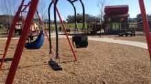 IMAGES: Destination: Parent-child swing at Knightdale Station Park