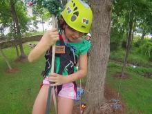 Fly again with Piedmont Recreational Tree Climbing