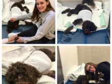 Amanda Lamb's dog Bella and her daughters