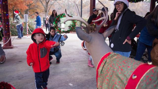Pullen Park Christmas 2019.6 Things You Need To Know If You Re Buying Tickets For