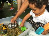 IMAGES: Need to keep a toddler busy? Make a sensory bin