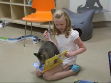 Cat Tales 2017 at SPCA of Wake County
