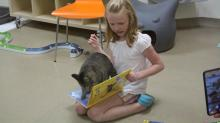 IMAGES: SPCA's summer reading program - with kitties! - filling up