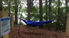 IMAGE: Want to hang a hammock? Raleigh's Lake Johnson Park has four spots for that