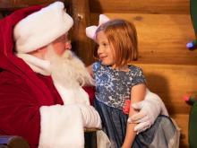 Santa at Bass Pro Shop's Santa's Wonderland