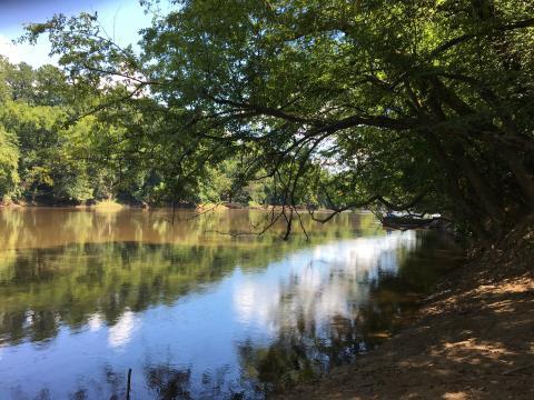 Raven Rock State Park, Lillington