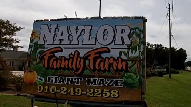 Nayor Family Farm's Giant Maze