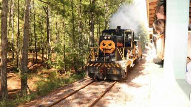 Courtesy: New Hope Valley Railway