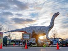 Dino Safari arrives in Raleigh in February 2021