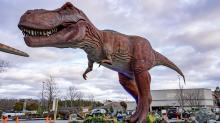 IMAGES: Take the Kids: Sarah King takes her kid to check out the new Dino Safari in Raleigh
