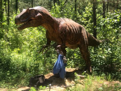 There are dinosaurs on the loose in Cumberland County!