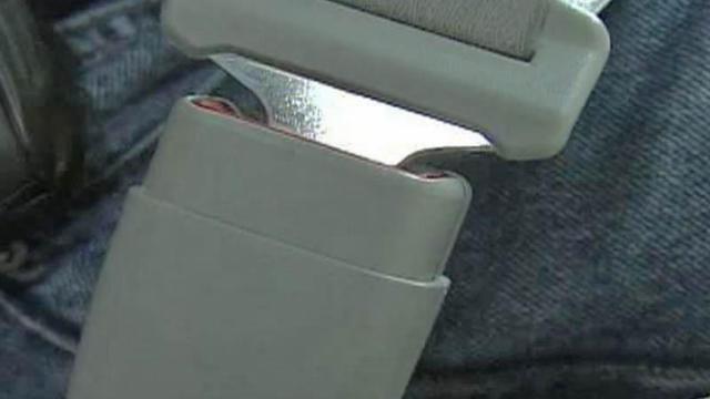 Seat Belt generic