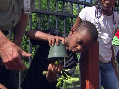 Michael Harris is among the children working at the Mayview community garden, off of Oberlin Road. He said his favorite part of the project is watering the plants.