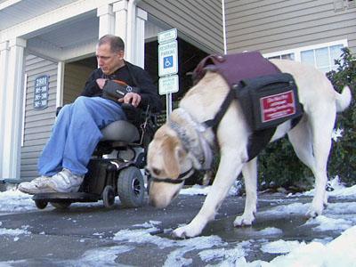 David Hamerka and his service dog, Duke.