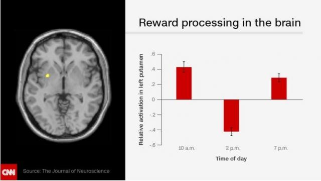 Our brain expects to receive more rewards in the afternoon than in the morning or evening. Researchers recomend not scheduling anything important for afternoons.
