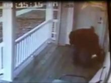 Prevention key to stop 'porch pirates'
