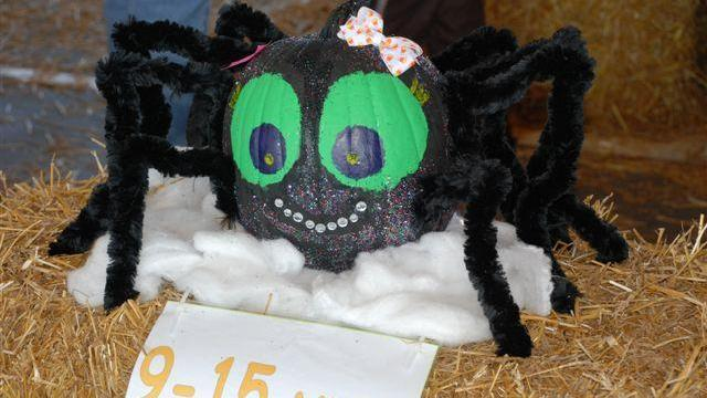 Thursday marked the 26th annual decorated pumpkin contest at the State Farmers Market in Raleigh.