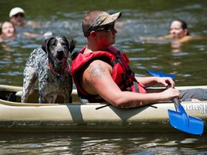 Festival goers explore the Eno with kayaks and canoes during the Festival for the Eno in Durham on July 7, 2012