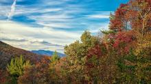 IMAGES: 2012 Fall colors