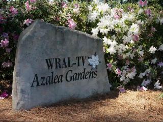 The azaleas were in full bloom in the WRAL Azalea Gardens on April 11, 2017.