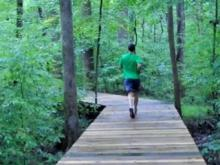 Jogging on the greenway