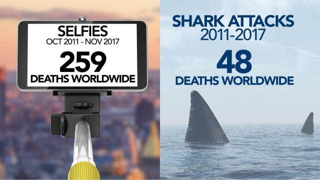 Beach-goers more likely to die from taking selfies than from shark attacks, experts say