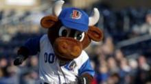 IMAGE: Reminder: Bring a Book Night this week at Durham Bulls