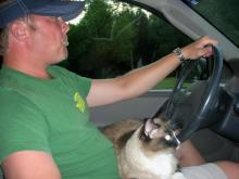 Boots, like Toonces, loves to drive. Contributed photo.