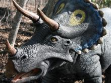 A few lucky guests got a sneak peak of the new animatronic dinosaur exhibit at the North Carolina Zoo in Asheboro on Thursday.