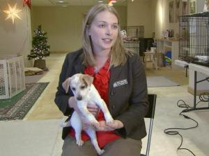 Darci VanderSlik, marketing and social media manager for the SPCA of Wake County