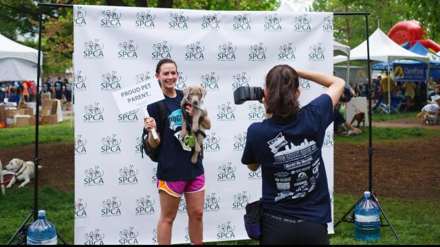 2015 SPCA of Wake County K9-3K Dog Walk