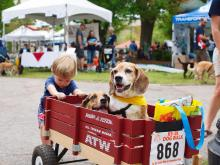 Hundreds of people and their dogs packed the streets of downtown Raleigh on April 18, 2015, for the 16th annual K9-3K Dog Walk benefiting the SPCA of Wake County.