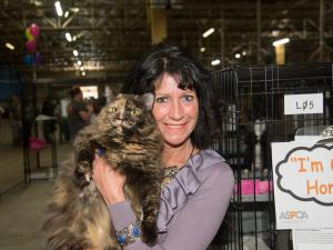 After the first day of a three-day animal adoption event in Sanford, officials said all the available dogs and many cats seized in January from an unlicensed shelter were taken to new homes, leaving only 100 cats to be adopted. Photos courtesy of ASPCA.