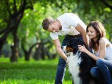 5 reasons your furry friend is the best thing ever for you