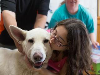 Hundreds of animals found new homes during the Clear the Shelters event Saturday.