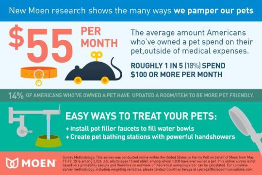Survey reveals odd behaviors of pet owners