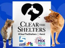Clear the Shelters logo