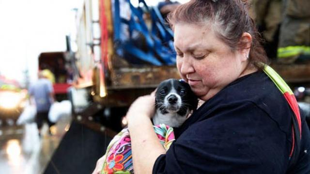 Elma Moreno comforts her dog, Simon, as they are loaded on a truck after being evacuated from their flooded apartment. Tropical Storm Harvey is causing major flooding throughout Houston and Southeast Texas.
