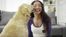 IMAGE: American Humane Society declares 'dog shortage'