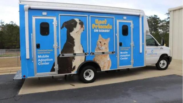 New adoption van brings Cumberland County dogs, cats outside the shelter