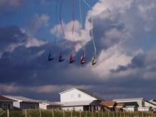 kites1-773564.JPG