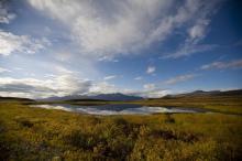 Wildlife and rugged beauty make Alaska a wonderful adventure vacation.