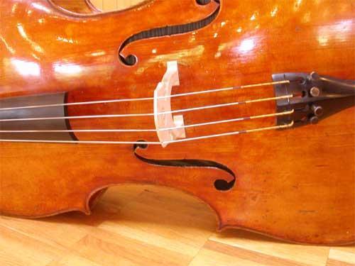 Cello Charmer
